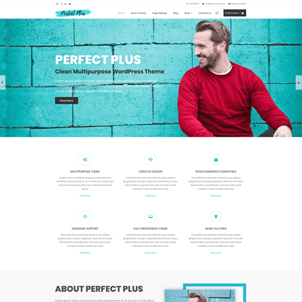 Clean Multipurpose WordPress Theme – Perfect Plus